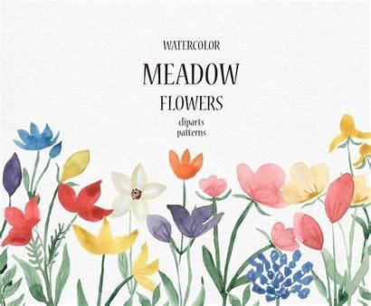 Clipart Meadow Wildflower Spring Clip Herbs Field