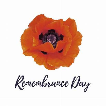 Remembrance Canadian Clip Illustrations Vector Graphics Royalty