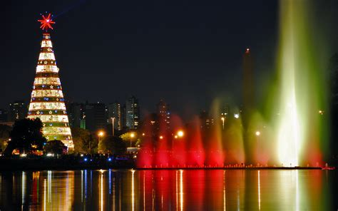 christmas tree   city wallpapers  images