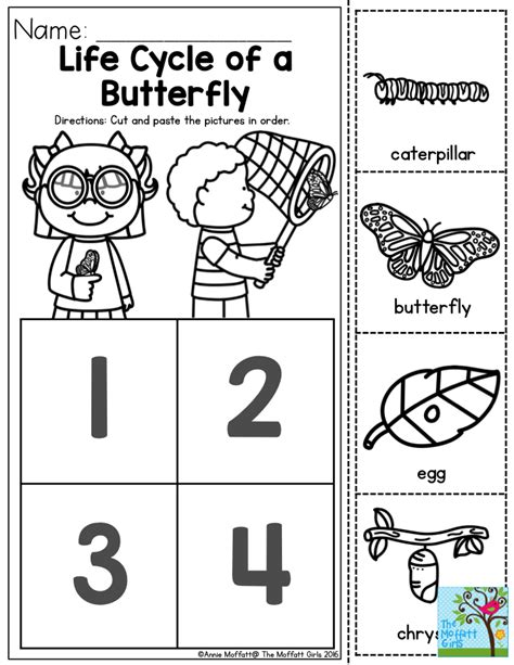 butterfly life cycle for preschool cycle of a butterfly you can teach the basic 723