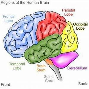 Brain Stem Stroke Symptoms