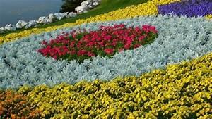 17 best images about jardinage on pinterest coins With modele de jardin moderne 0 1001 conseils et modales pour creer une parterre de fleurs