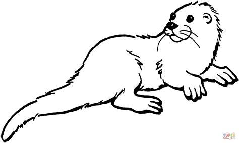 Ausmalbild Otter Schaut Nach Hinten Ausmalbilder
