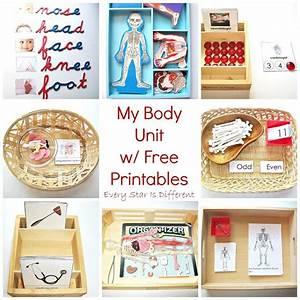 Best 25+ Body parts ideas on Pinterest