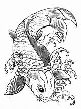 Koi Coloring Fish Pages Japanese Drawing Adults Printable Template Tattoo Colouring Outline Designs Japan Print Psychedelic Templates Clip Sketch sketch template