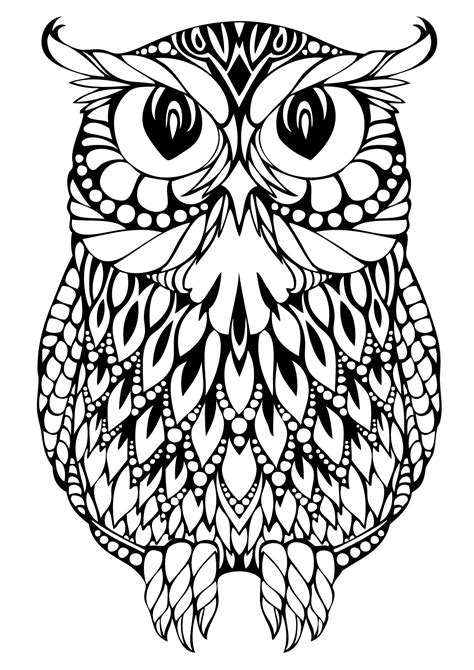 owl coloring pages adult coloring pages coloring paper