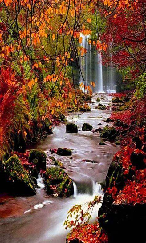autumn waterfall wallpaper  veervz    zedge