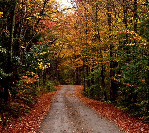 Wilmington VT: Autumn Road | View On Black This photo has ...