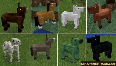 horses mod  minecraft pe android