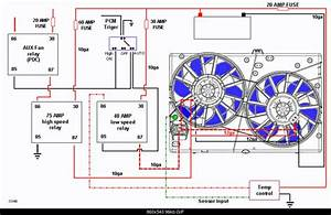 Ford Contour Electric Fan Wiring