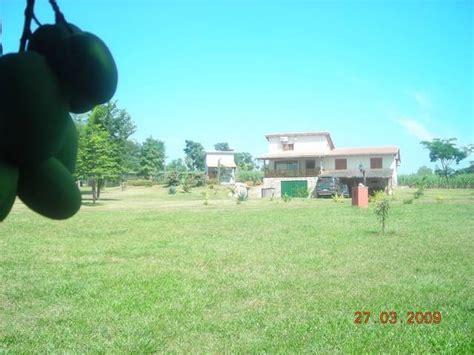 grundstück mit haus 3 5 hektar grundst 252 ck mit haus independencia paraguay