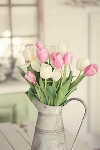 Was Sind Frühlingsblumen : fr hlingsblumen 3 typische vorboten der neuen saison ~ Whattoseeinmadrid.com Haus und Dekorationen