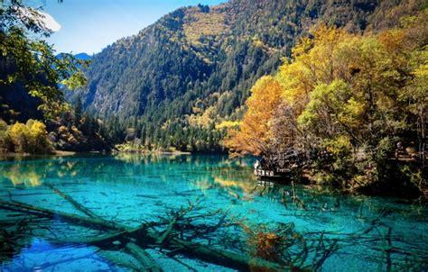 beautiful photo  jiuzhaigou national park  china