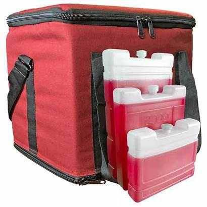 Medicine Travel Bag Cold Chain Packaging Solutions