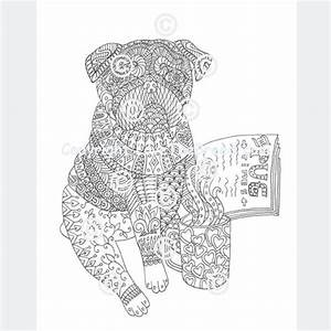 Pug Coloring Book For Adults And Children