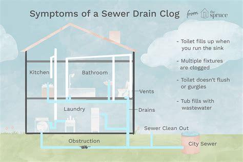 symptoms   sewer drain clog
