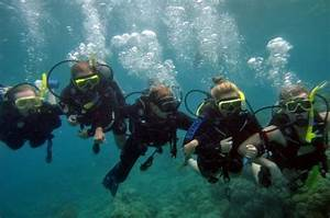 Cairns Info.com - Compass Cruises - Cairns Australia - Rates