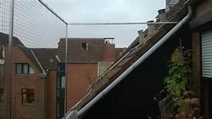 Balkon Trennwand Ohne Bohren : dachloggia balkon in k ln ohne bohren mit katzennetz gesichert katzennetze nrw der ~ Bigdaddyawards.com Haus und Dekorationen