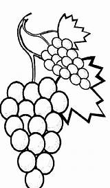 Grapes Coloring Pages Fruits Sweet Favorite Vine Fruit Printable Getcolorings sketch template