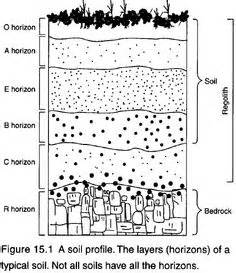 Soil Formation Worksheet Answers Env Sci Self Directed Learning On Environmental Education Volcanoes And Weather