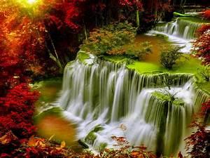 Cascade, Falls