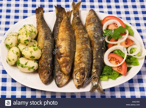 sardine cuisine grilled sardines portugal food stock photo royalty free