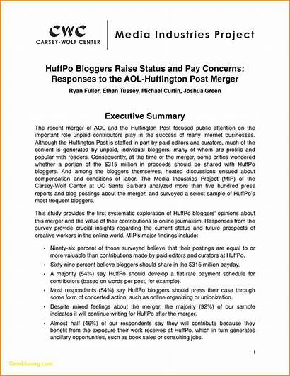 Summary Executive Example Template Report Examples Marketing