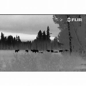 FLIR Scout TS24 Thermal Imaging Monocular - 420677 ...