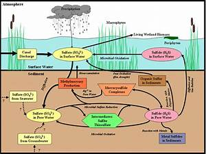 Water Resources Management And Water Quality Protection