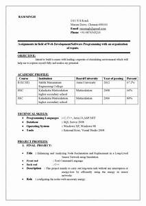 best resume format doc resume computer science engineering With how to prepare resume for freshers in engineering