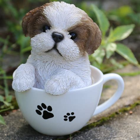 gift  teacup shih tzu puppy statue reviews