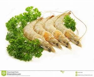 Fresh Raw Shrimp Stock Photos - Image: 18767493