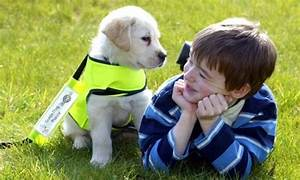 Are PETS the key to treating autism? | Daily Mail Online