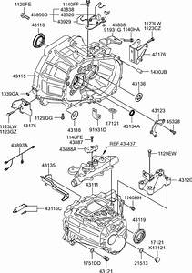 Hyundai Accent Manual Transmission Diagram 2001 Hyundai Accent Manual Transmission Fluid