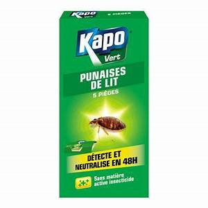Kapo Punaise De Lit : a rosol punaises de lit castorama ~ Dailycaller-alerts.com Idées de Décoration