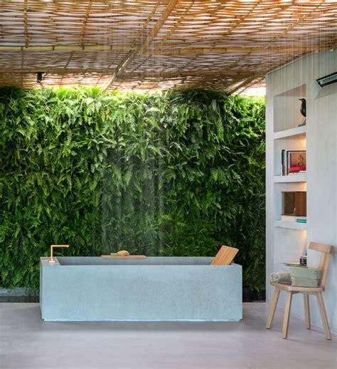 bathroom plants  decorate  modern bath