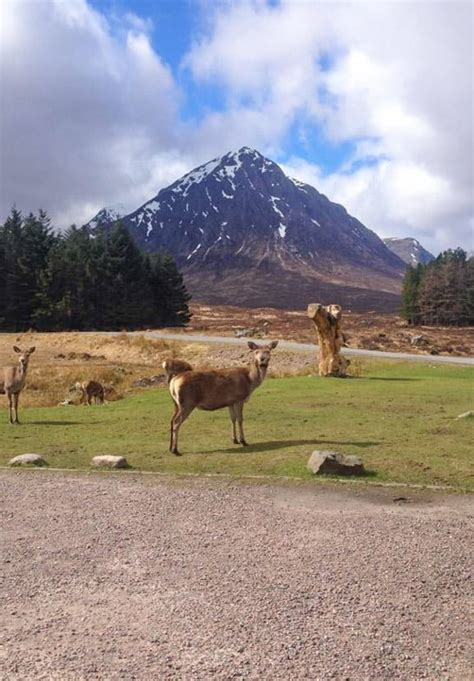 west highland  accommodation list   stayed