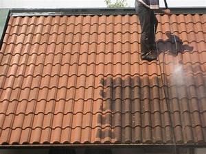 Le démoussage de la toiture Devis demoussage toiture