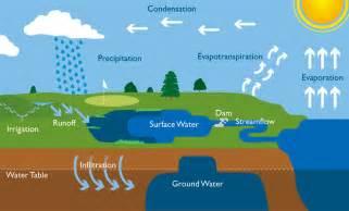 Hydrologic Water Cycle Diagram