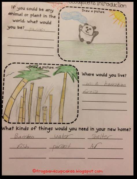 ecosystem freebie follow up as seen on fourth grade friends www fourthgradefriends
