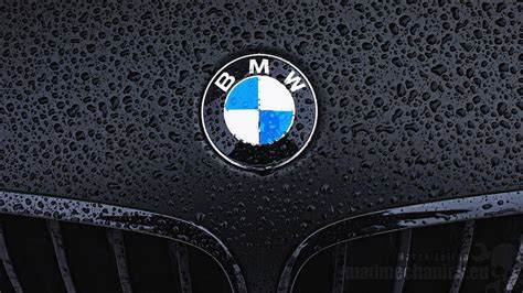logo bmw bmw m logo wallpapers wallpaper cave