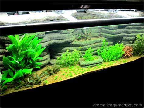 Diy Aquarium Background Get Inspired With These 9 Diy Aquarium Backgrounds Tfcg