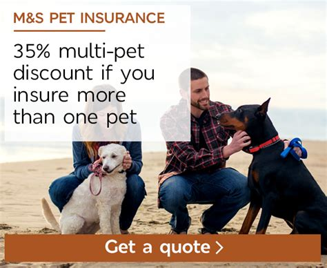 pet insurance quotes pet insurance for dogs cats m s bank