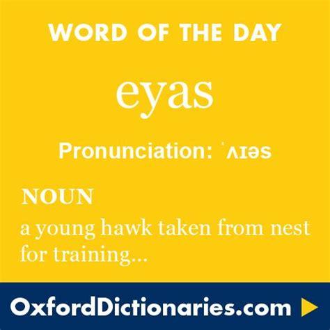 eyas (noun): A young hawk, especially (in falconry) an ...