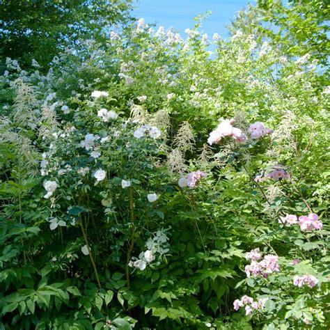 Englischer Garten Ettenbühl by Altes Rosenw 228 Ldchen Landhaus Ettenb 252 Hl