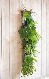 les 25 meilleures idees de la categorie mur d39 herbe sur With decoration mur exterieur jardin 1 decoration vegetale le rideau vegetal jardiniere d