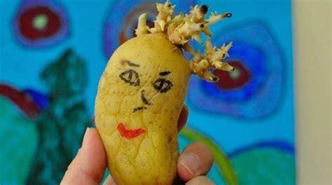 l astuce infaillible pour emp 234 cher les pommes de terre de