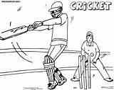 Coloring Cricket Colouring sketch template