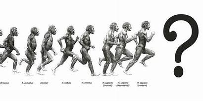Sapiens Species Homo Erectus Neanderthals Sandwich Theory