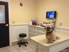Image result for images of veterinarian office